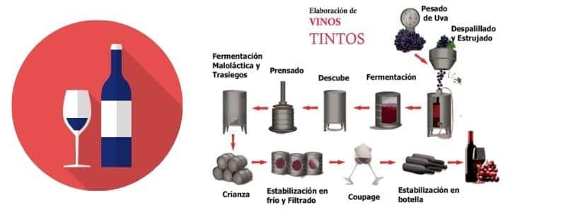 Como se elabora un vino tinto